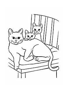 Katzen Malvorlagen Chords Katzen Malvorlagen