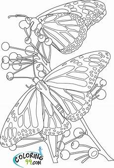 Malvorlage Schmetterling Blume Butterfly Coloring Pages Team Colors