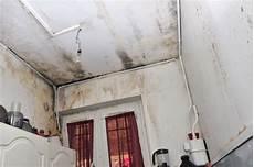 mauvaise odeur maison humidité combattre l odeur d humidit 233 dans la maison