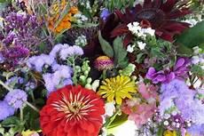 fiori d bach fiori di bach metodi di preparazione e l estratto