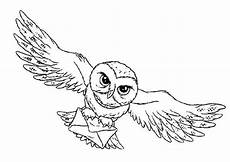 Ausmalbilder Eule Hedwig Harry Potter Owl Coloring Page Jpg Print