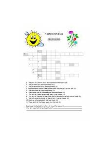 photosynthesis crossword teaching resources