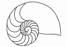 coloring page nautilus mollusc squid img 27187