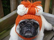 hund mit mütze sad pug is the model for these silly hats 16 pics