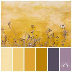 color inspiration growing astelle s colors