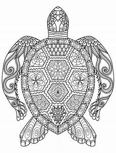 animal mandala coloring pages turtle coloring pages mandala coloring pages