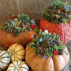 composizioni fiori autunnali fiori d autunno per un tocco di stile le verzeletti