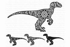 mandala dinosaur svg raptor mandala illustrations