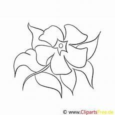 Blumen Zum Ausmalen Malvorlagen Blumen Zum Ausmalen