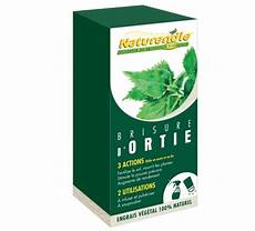 purin d ortie nature d 233 couvertes