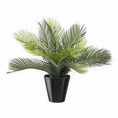 palmier exterieur en pot cycas artificiel 38 cm sans pot arbres exotiques reflets