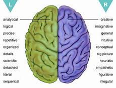 Perbedaan Fungsi Otak Kanan Dan Kiri Win