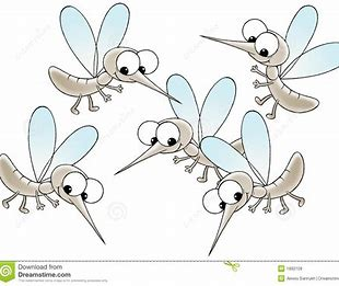 Image result for Gnat Cartoon