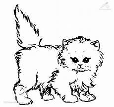 Katzen Malvorlagen Name Ausmalbild Katze 9 Jpg 680 215 637 Mit Bildern