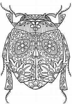 Ausmalbilder Erwachsene Insekten Zen Ausmalbilder Kostenlos Top Kostenlos F 228 Rbung