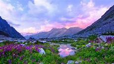 Flower Valley Wallpaper by Valley With A Lake Rock Flowers Mountain Sky Clouds