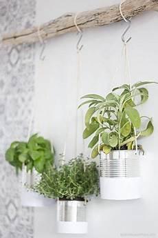 plante suspendue verre 10 id 233 es pour am 233 nager jardin ou sa terrasse avec des