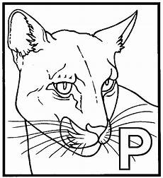 panther coloring page animals town animals color sheet