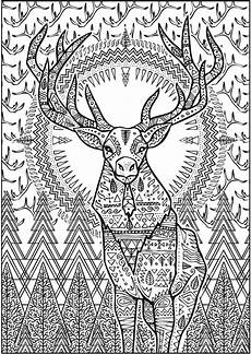 coloring book pages animals 16921 welcome to dover publications