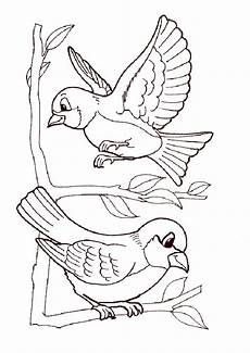 Vogel Malvorlagen Malvorlagen V 246 Gel Zum Ausdrucken Zum Drucken Ausmalbilder