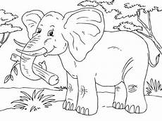 Malvorlagen Elefant Malen Malvorlage Elefant Elephant Coloring Page Coloring