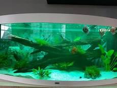 450l aquarium mit oder ohne ausstattung zu verkaufen in