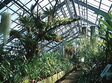 file botanischer garten heidelberg bromelienschauhaus