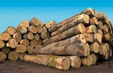 de bois bois le meilleur mat 233 riau pour une terrasse chic