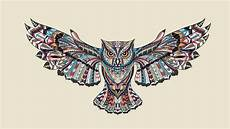 Patterned Flying Owl Drawing Illustration Hd Wallpaper