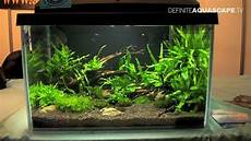 Aquascaping Aquarium Ideas From Zoobotanica 2013 Pt 3
