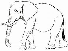Malvorlagen Elefant Malen Pin Auf Ausmalbilder Vorlagen