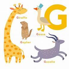 G Letter Animals Set Alphabet Vector
