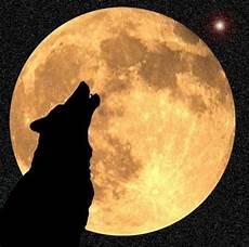 image associ 233 e magnifique lune image lune et loup qui hurle