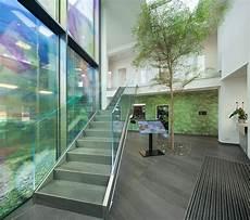 Gro 223 Er Baum Gro 223 Pflanzen Innenraum Atrium Gewerbe Privat