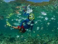 ten things to take your snorkeling adventure blog