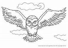 Ausmalbilder Eule Hedwig Coloring Snowy Owl Hedwig Picture Harry Potter Clip