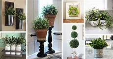 Home Decor Ideas Plants by 36 Best Farmhouse Plant Decor Ideas And Designs For 2019