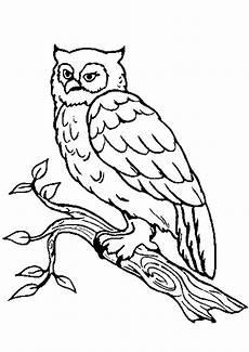 ausmalbilder v 246 gel 09 ausmalbilder tiere