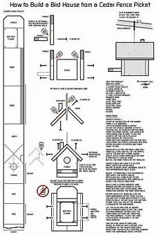 cardinal bird house plans unique cardinal bird house plans new home plans design