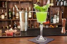 Wie Trinkt Gin Alles Zum Idealen Trinkgenuss Banneke