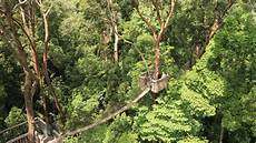 17 Fungsi Hutan Lindung Pengertian Gambar Contoh