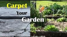 your garden carpet your vegetable garden to stop weeds grow great crops
