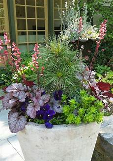 beautiful spring container plantings from terrain and