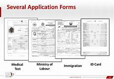 national id programs some insights from the uae
