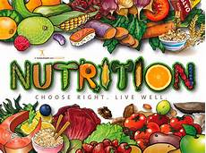 nutrition poster healthy food poster nutrition month