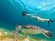3 gili islands lombok snorkeling tour with boat wandernesia