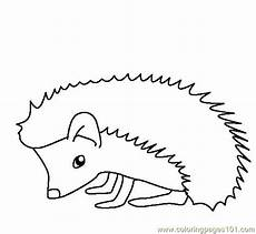 hedgehog coloring page getcoloringpages