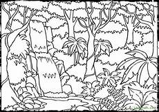 rainforest coloring pages to and print for free