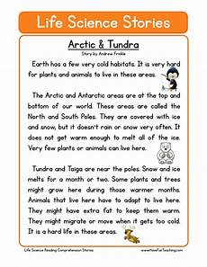 reading comprehension worksheet arctic tundra