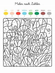 kostenlose malvorlage malen nach zahlen tulpenwiese